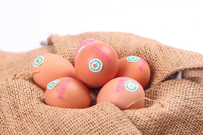 青城山土鸡蛋