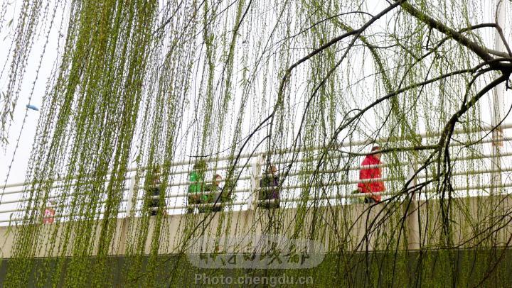 春天风景画图片大全; 桥上的风景(之二);