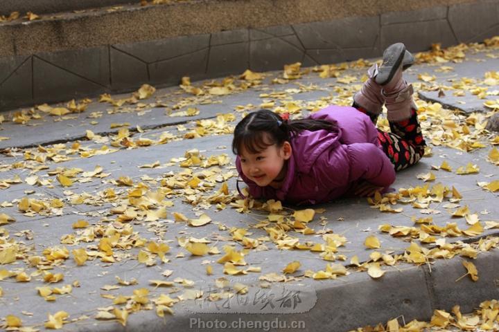 爬在银杏叶上的小女孩_快拍成都_成都图片网女生赠言好友的给图片
